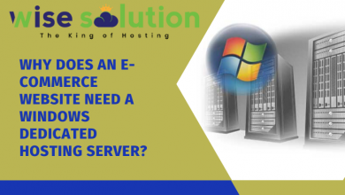 Why does an eCommerce website need a Windows dedicated hosting server